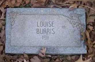 BURRIS, LOUISE - Pope County, Arkansas | LOUISE BURRIS - Arkansas Gravestone Photos