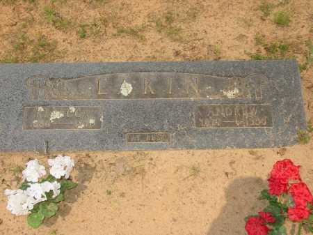 PIGG EAKIN, REBECCA - Pope County, Arkansas | REBECCA PIGG EAKIN - Arkansas Gravestone Photos