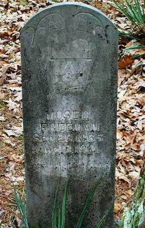 FREEMAN, MOSE B - Pope County, Arkansas | MOSE B FREEMAN - Arkansas Gravestone Photos