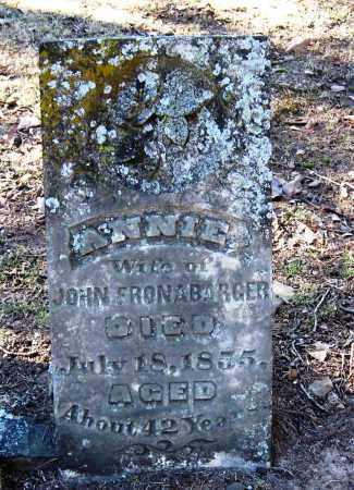 FRONABARGER, ANNIE - Pope County, Arkansas   ANNIE FRONABARGER - Arkansas Gravestone Photos
