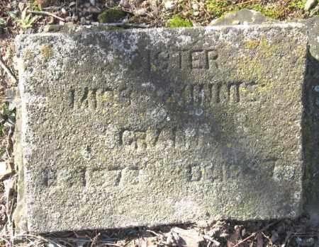 GRANT, MINNIE, MISS - Pope County, Arkansas | MINNIE, MISS GRANT - Arkansas Gravestone Photos