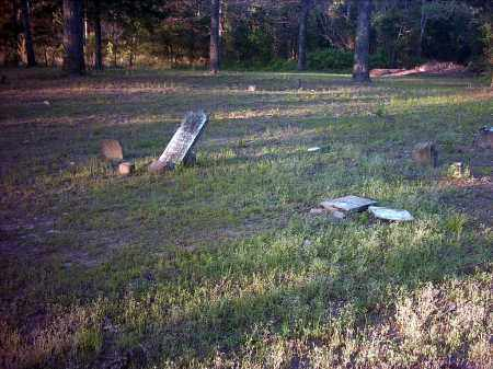 *HILLIS CEMETERY OVERVIEW,  - Pope County, Arkansas |  *HILLIS CEMETERY OVERVIEW - Arkansas Gravestone Photos
