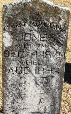 JONES, MARY SALENA - Pope County, Arkansas | MARY SALENA JONES - Arkansas Gravestone Photos