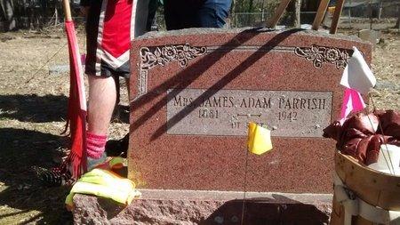 PARRISH, JAMES ADAM, MRS. - Pope County, Arkansas   JAMES ADAM, MRS. PARRISH - Arkansas Gravestone Photos