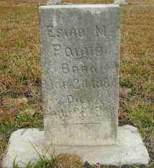 PAYNE, ESME M - Pope County, Arkansas | ESME M PAYNE - Arkansas Gravestone Photos
