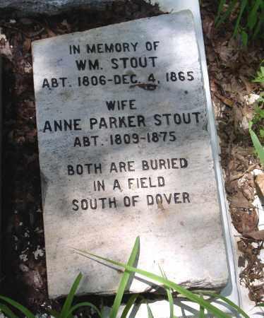 STOUT, ANNE - Pope County, Arkansas | ANNE STOUT - Arkansas Gravestone Photos