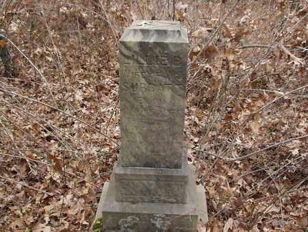 SURRATT, LILLIE  B - Pope County, Arkansas | LILLIE  B SURRATT - Arkansas Gravestone Photos