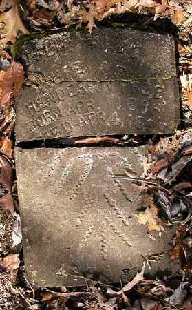 CHANDLER PREE, JULIA - Pope County, Arkansas   JULIA CHANDLER PREE - Arkansas Gravestone Photos