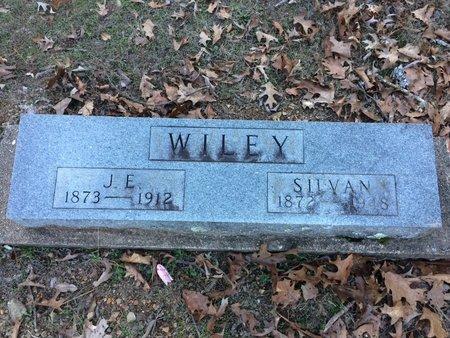 WILEY, J  E - Pope County, Arkansas | J  E WILEY - Arkansas Gravestone Photos