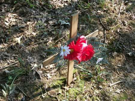 UNKNOWN, UNKNOWN - Prairie County, Arkansas | UNKNOWN UNKNOWN - Arkansas Gravestone Photos