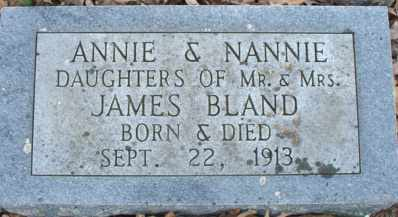 BLAND, ANNIE - Pulaski County, Arkansas | ANNIE BLAND - Arkansas Gravestone Photos