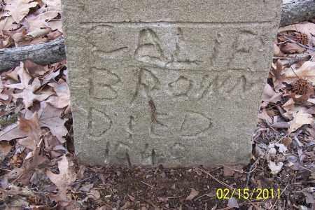 BROWN, CALIE - Pulaski County, Arkansas   CALIE BROWN - Arkansas Gravestone Photos
