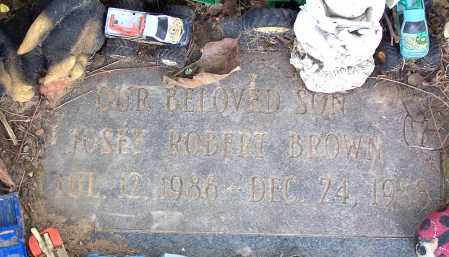 BROWN, JOSEY ROBERT - Pulaski County, Arkansas | JOSEY ROBERT BROWN - Arkansas Gravestone Photos