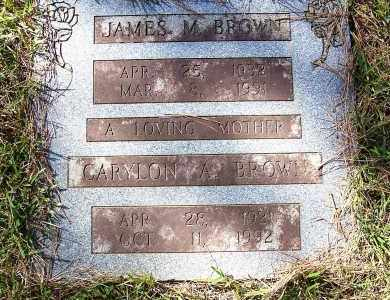 BROWN, JAMES M. - Pulaski County, Arkansas | JAMES M. BROWN - Arkansas Gravestone Photos