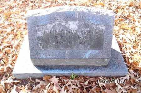 BROWN, LUCIE - Pulaski County, Arkansas   LUCIE BROWN - Arkansas Gravestone Photos