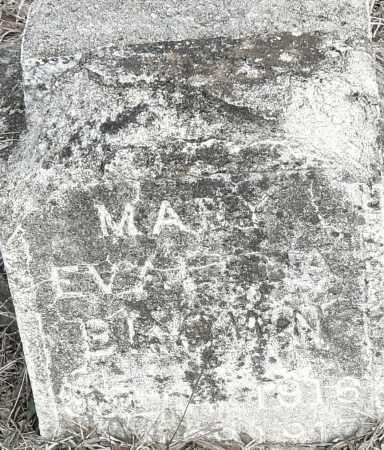 BROWN, MARY EVA - Pulaski County, Arkansas | MARY EVA BROWN - Arkansas Gravestone Photos