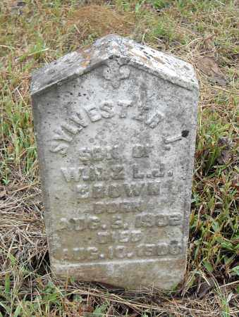 BROWN, SYLVESTER J - Pulaski County, Arkansas | SYLVESTER J BROWN - Arkansas Gravestone Photos
