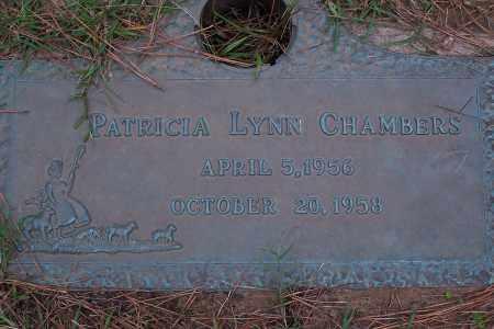 CHAMBERS, PATRICIA LYNN - Pulaski County, Arkansas | PATRICIA LYNN CHAMBERS - Arkansas Gravestone Photos