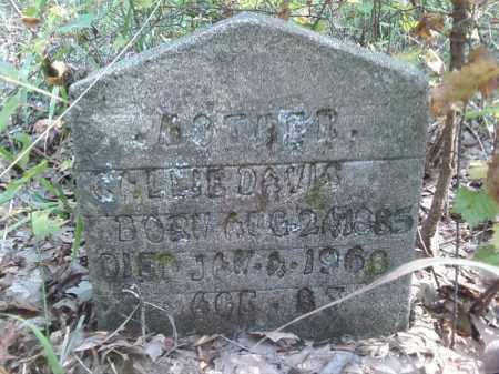 DAVIS, CALLIE - Pulaski County, Arkansas   CALLIE DAVIS - Arkansas Gravestone Photos