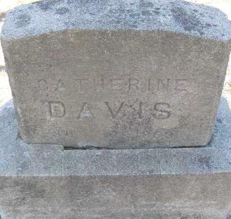 DAVIS, CATHERINE - Pulaski County, Arkansas | CATHERINE DAVIS - Arkansas Gravestone Photos