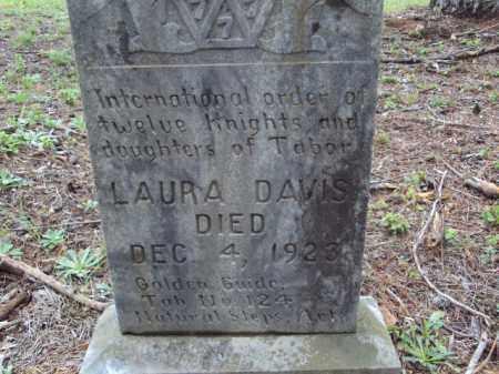 DAVIS, LAURA - Pulaski County, Arkansas | LAURA DAVIS - Arkansas Gravestone Photos