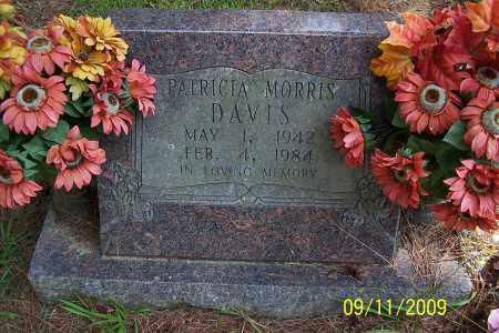 DAVIS, PATRICIA - Pulaski County, Arkansas | PATRICIA DAVIS - Arkansas Gravestone Photos