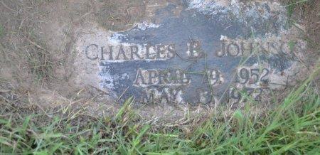 JOHNSON, CHARLES E - Pulaski County, Arkansas | CHARLES E JOHNSON - Arkansas Gravestone Photos