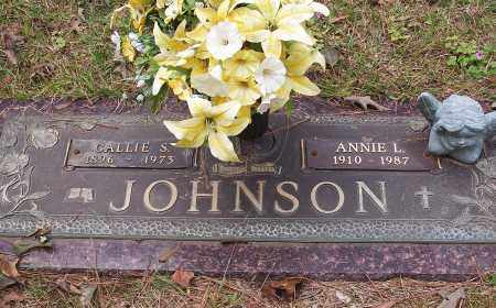 JOHNSON, ANNIE L. - Pulaski County, Arkansas | ANNIE L. JOHNSON - Arkansas Gravestone Photos