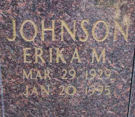 JOHNSON, ERIKA M. - Pulaski County, Arkansas | ERIKA M. JOHNSON - Arkansas Gravestone Photos