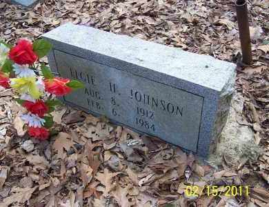 JOHNSON, ELGIE H - Pulaski County, Arkansas | ELGIE H JOHNSON - Arkansas Gravestone Photos