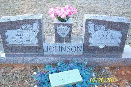 JOHNSON, LUCY B - Pulaski County, Arkansas | LUCY B JOHNSON - Arkansas Gravestone Photos