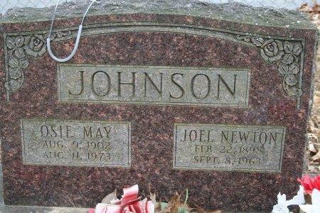 JOHNSON, JOEL NEWTON - Pulaski County, Arkansas | JOEL NEWTON JOHNSON - Arkansas Gravestone Photos