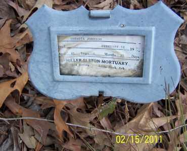 JOHNSON, RHENDIA - Pulaski County, Arkansas | RHENDIA JOHNSON - Arkansas Gravestone Photos