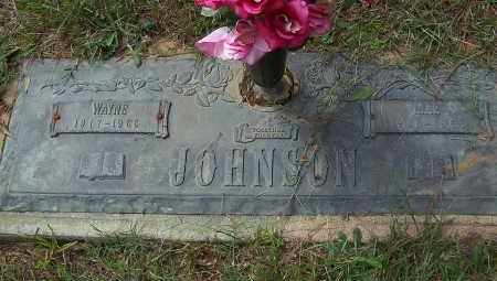 JOHNSON, MAE - Pulaski County, Arkansas | MAE JOHNSON - Arkansas Gravestone Photos