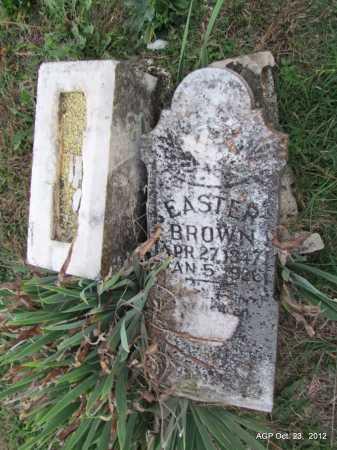 BROWN, EASTER ROENIA - Randolph County, Arkansas | EASTER ROENIA BROWN - Arkansas Gravestone Photos