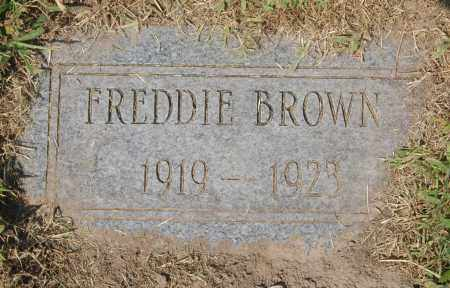 BROWN, FREDDIE - Randolph County, Arkansas | FREDDIE BROWN - Arkansas Gravestone Photos