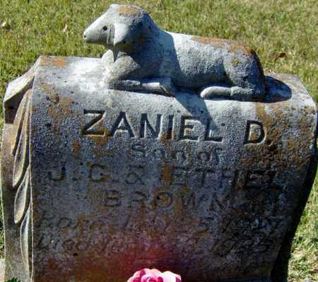 BROWN, ZANIEL D - Randolph County, Arkansas   ZANIEL D BROWN - Arkansas Gravestone Photos
