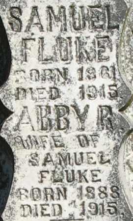 FLUKE, ABBY R (CLOSEUP) - Randolph County, Arkansas | ABBY R (CLOSEUP) FLUKE - Arkansas Gravestone Photos