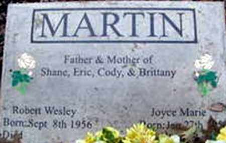 ELLIOTT MARTIN, JOYCE MARIE - Randolph County, Arkansas   JOYCE MARIE ELLIOTT MARTIN - Arkansas Gravestone Photos