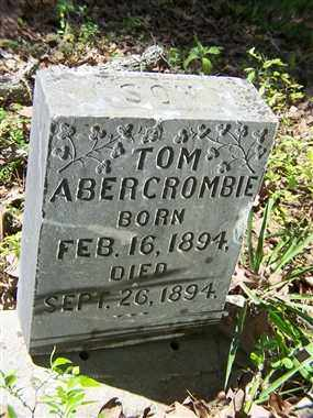 ABERCROMBIE, TOM - Saline County, Arkansas | TOM ABERCROMBIE - Arkansas Gravestone Photos