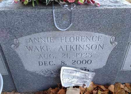WAKE ATKINSON, ANNIE FLORENCE - Saline County, Arkansas | ANNIE FLORENCE WAKE ATKINSON - Arkansas Gravestone Photos