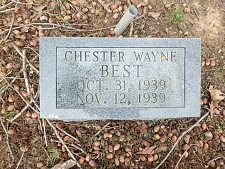 BEST, CHESTER WAYNE - Saline County, Arkansas | CHESTER WAYNE BEST - Arkansas Gravestone Photos