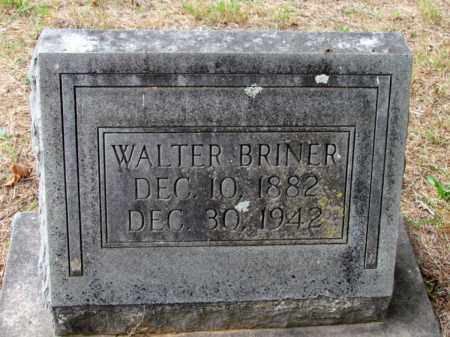 BRINER, WALTER - Saline County, Arkansas | WALTER BRINER - Arkansas Gravestone Photos