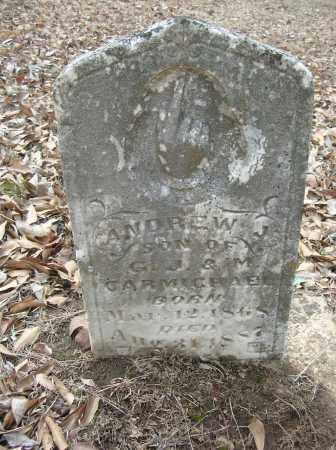 CARMICHAEL, ANDREW J - Saline County, Arkansas | ANDREW J CARMICHAEL - Arkansas Gravestone Photos