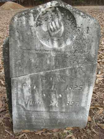 CARMICHAEL, M - Saline County, Arkansas | M CARMICHAEL - Arkansas Gravestone Photos