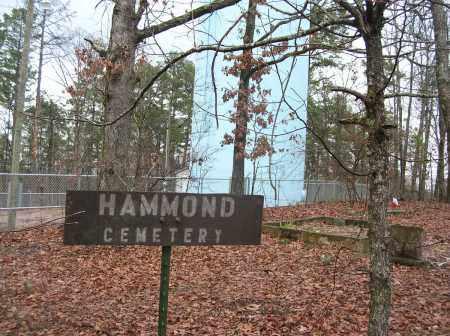 * HAMMOND CEMETERY, SIGN - Saline County, Arkansas   SIGN * HAMMOND CEMETERY - Arkansas Gravestone Photos