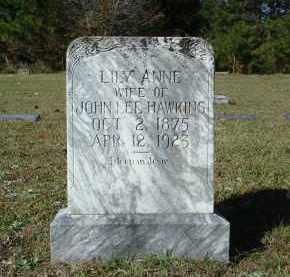 HAWKINS, LILY ANNE - Saline County, Arkansas | LILY ANNE HAWKINS - Arkansas Gravestone Photos