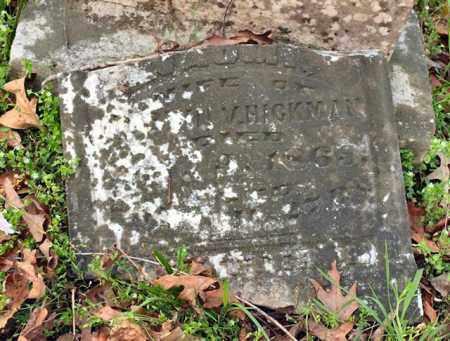 JAMES HICKMAN, NAOMI - Saline County, Arkansas | NAOMI JAMES HICKMAN - Arkansas Gravestone Photos