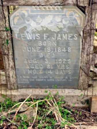 JAMES, LEWIS FLETCHER (CLOSEUP) - Saline County, Arkansas   LEWIS FLETCHER (CLOSEUP) JAMES - Arkansas Gravestone Photos