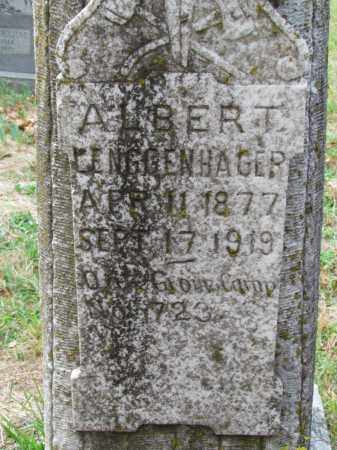 LENGGENHAGER, ALBERT (CLOSE UP) - Saline County, Arkansas   ALBERT (CLOSE UP) LENGGENHAGER - Arkansas Gravestone Photos